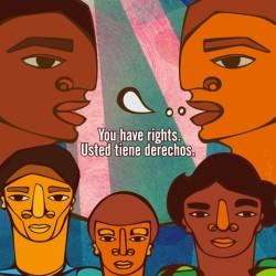 Immigrant Defense Project Padilla Rights Poster
